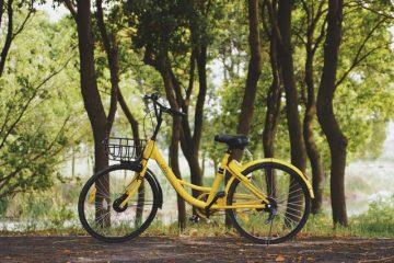 Een e-bike moet je veilig stallen